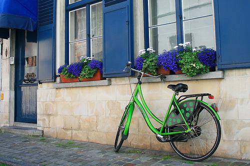 Domótica verde y confortable