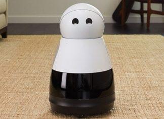 robot kuri