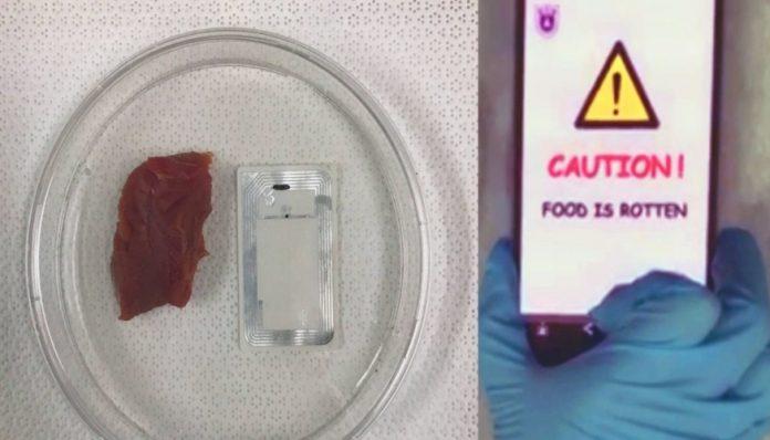 Diseñan nariz artificial que advierte si la comida está dañada