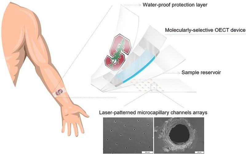 Diseña parche capaz de analizar el sudor para detectar enfermedades