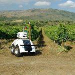 Conoce a VineScout, el robot agricultor diseñado para cuidar los viñedos