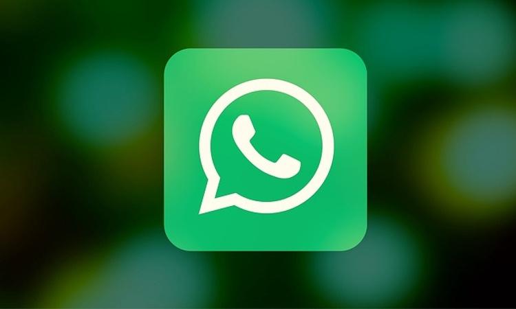 Los grupos en WhatsApp